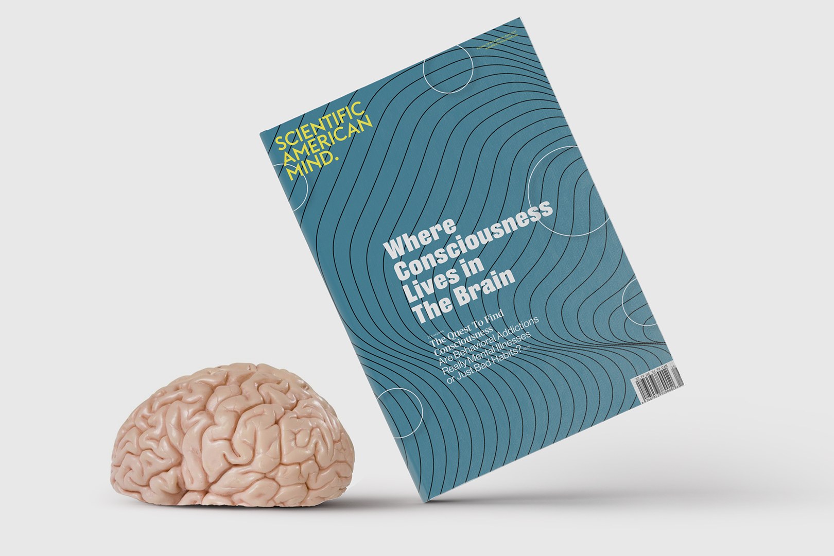 Scientific American Mind—Rebrand The Total Experience
